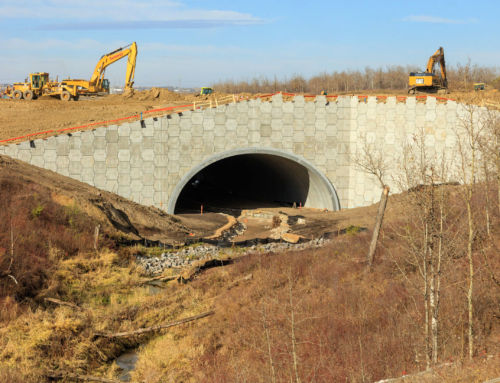 Reinforced Earth® Headwalls for Wildlife Crossing